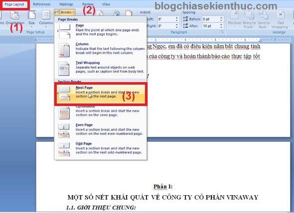 danh-so-trang-trong-word-2010-2007-buoc-2