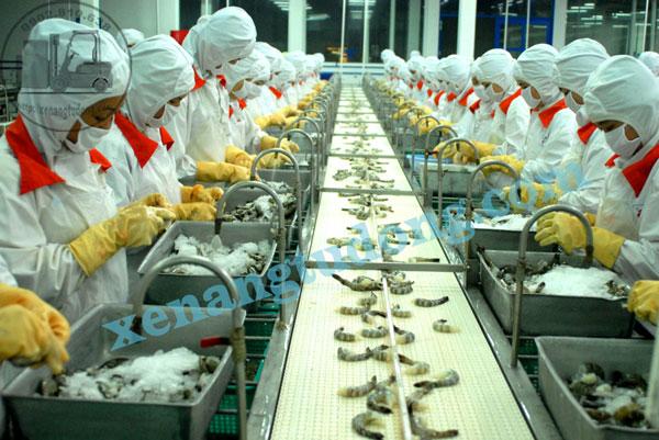 Đồ bảo hộ lao động chuyên cho nghành chế biến thực phẩm.