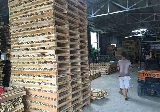 Pallet gỗ Bình Dương